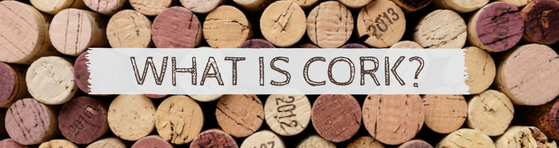 What is Cork